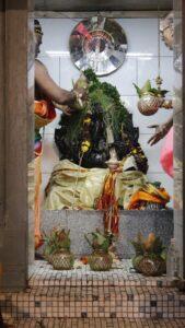 பத்தாம் திருவிழா – தீர்த்தம் (மகோற்சவம் 2014) 21