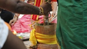 பத்தாம் திருவிழா – தீர்த்தம் (மகோற்சவம் 2014) 110